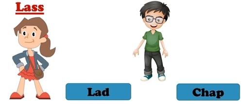 Phân biệt các từ chỉ giới tính trong tiếng Anh - 9