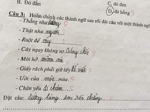 Ruột để tiêu hóa - học sinh cấp 1 khiến cô giáo cạn lời qua bài tập hoàn chỉnh thành ngữ - 8
