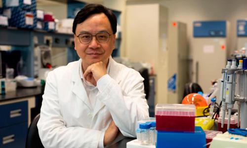 Giáo sư Dennis Lo, cha đẻ của phương pháp xét nghiệm NIPT. Ảnh: CNN.