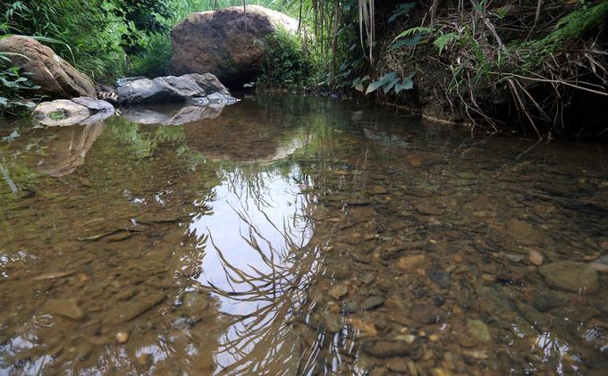 Dòng suối thấm dầu đen chảy về nhà máy nước Sông Đà