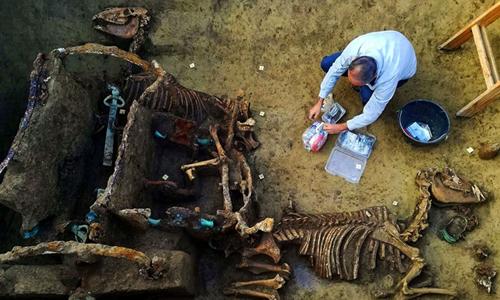 Cỗ xe hai bánh và hài cốt đôi ngựa 1.800 năm tuổi tại Croatia. Ảnh: Fox News.