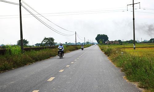 Ngoại thành Hà Nội phát triển nông thôn mới nhờ nông nghiệp