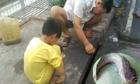 Hai bá» con giật cá trê liên tục á» há» ga trên ÄÆ°á»ng Sài Gòn