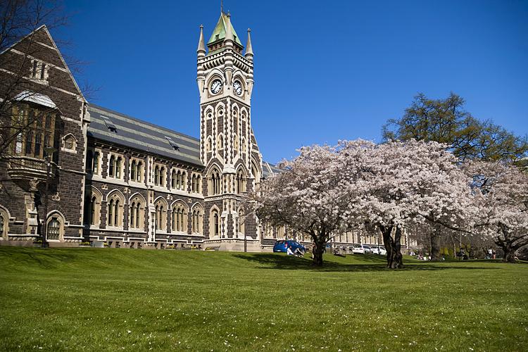 Tháp đồng hồ, biểu tượng của Đai học Otago, New Zealand. Ảnh: University of Otago