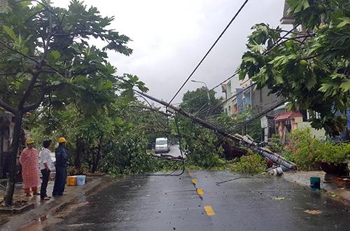 Ảnh hưởng của bão, Đà Nẵng có mưa và gió lớn khiến nhiều cây xanh ngã đổ. Ảnh: T.H.