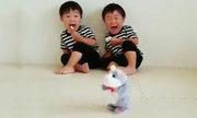 Hai anh em khóc toáng khi thấy chuột đồ chơi di chuyển