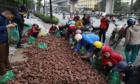 Điệp khúc giải cứu khiến nông dân còn mãi nghèo