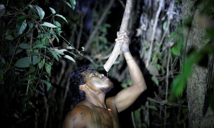 Paulo Paulino Guajajara tại một khu trại tạm bợ trong khu bảo tồn Arariboia thuộc rừng Amazon hôm 10/9. Ảnh: Reuters.