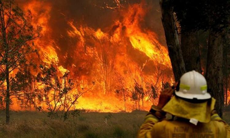 Lính cứu hỏa Australia nhìn mộtđám cháy rừng ở bang New South Wales hôm . Ảnh: Reuters.