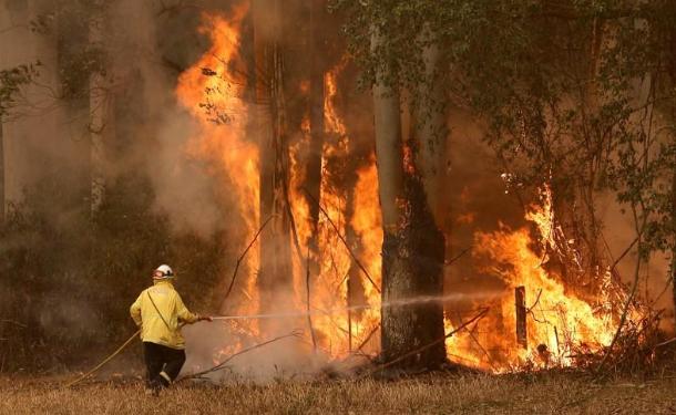 Lính cứu hỏa chữa cháy rừng ở bang New South Wales ngày 12/11. Ảnh: Reuters