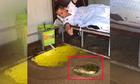 Cần thủ nằm trên giường câu cá khủng