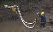 Hút hàng tấn dầu chảy ra sông