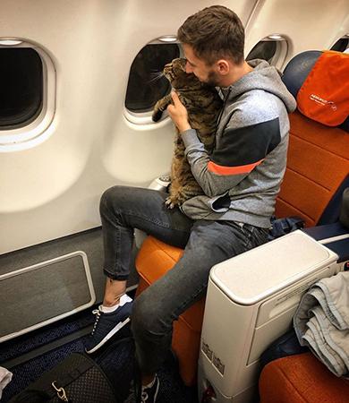 Mikhail Galin và mèo Viktor trên chuyến bay hồi đầu tháng của hãngAeroflot