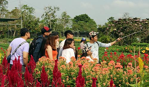 Du khách đến vui chơi tại làng hoa Sa Đéc. Ảnh: Long Hồ