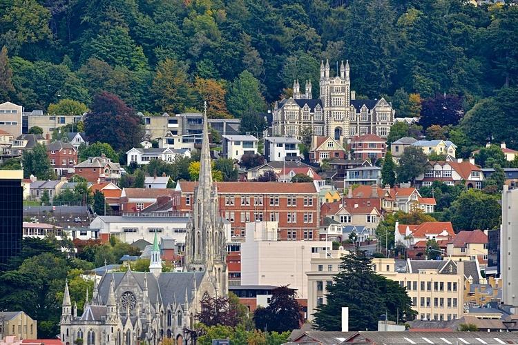 Thành phố Dunedin, New Zealand. Ảnh: Shutterstock