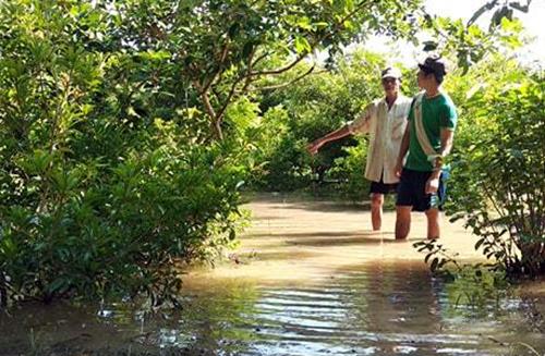 Xã cù lao An Bình bị ngập lụt do vỡ đê sáng 7/10. Ảnh: Hưng lợi