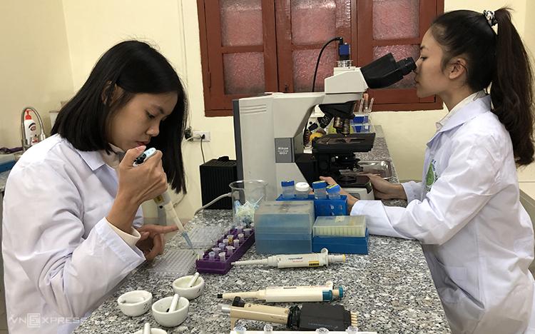 Các kỹ thuật viêntìm nguyên nhân gây bệnh cho cây tại phòng thí nghiệm của Bệnh viện cây trồng. Ảnh: Bảo Chi