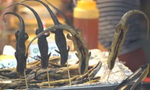 Món ăn từ côn trùng thu hút thực khách Sài Gòn