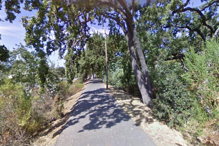 Con đường mòn nơi bé gái dắt chó đi dạo. Ảnh: New York Post.