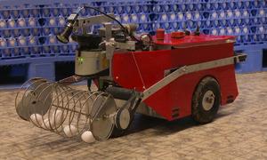 Robot nhặt trứng gà tự động