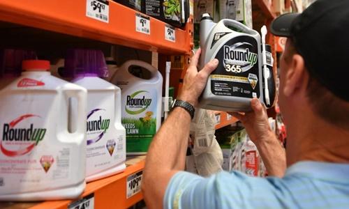 Một người Mỹ cầm thuốc diệt cỏ Roundup tại siêu thị ở California tháng 7/2018. Ảnh: AFP.