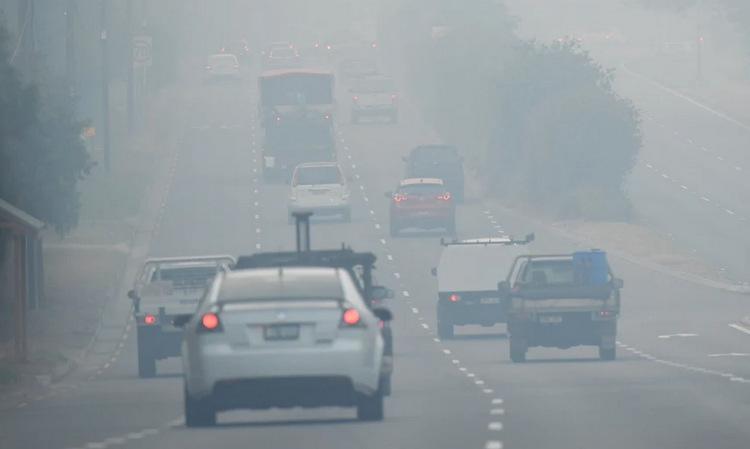 Khói cháy rừng bao phủ ngoại ô Sydney hôm 22/11. Ảnh: Sydney Morning Herald.