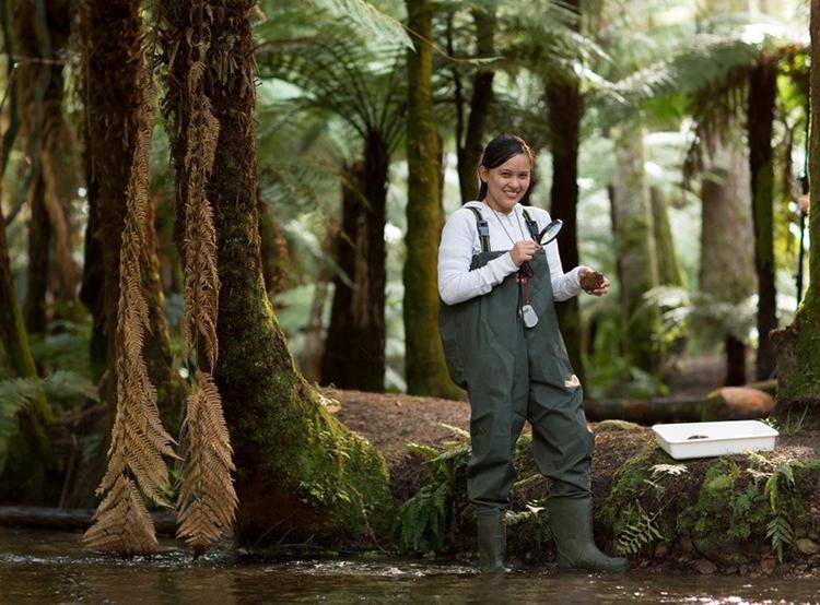 Du học sinh được học lý thuyết kết hợp thực hành để thầm nhuần tư duy bền vững của người New Zealand.