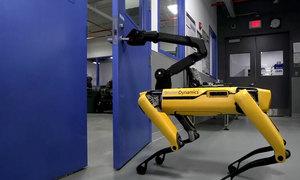 Robot bán tự động 4 chân giúp việc cho cảnh sát
