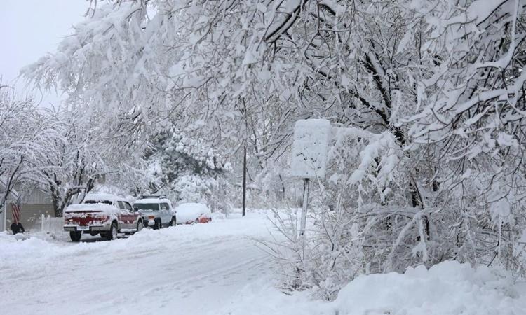 Tuyết rơi dày gây cản trở giao thông trên một con đường ở thành phố Flagstaff bang Arizona. Ảnh: Azdailysun.com.