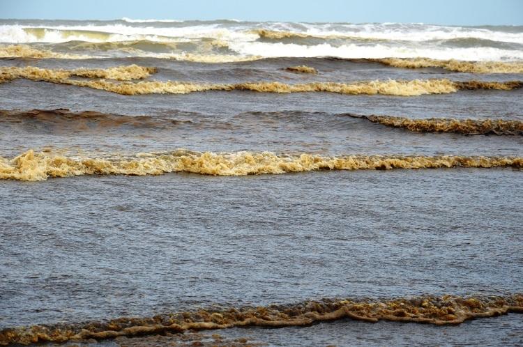 Nước biển Khe Hai có màu đen bất thường. Ảnh: Phạm Linh.