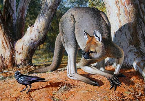 Hình ảnh phục dựng loài Procoptodon goliath. Ảnh: Animalof the world.
