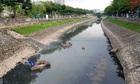 Giải pháp công nghệ tình thế không thể làm sạch sông Tô Lịch