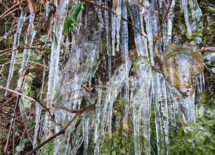 Nước từ trên khe núi nhỏ xuống, đóng thành băng. Ảnh: Chu Việt Bắc