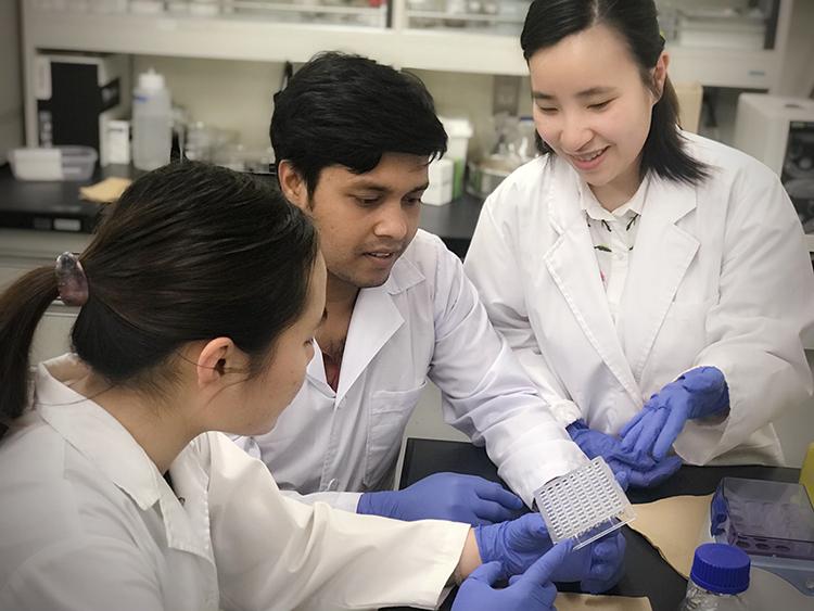 Các nghiên cứu viên làm việc tại Phòng thí nghiệmĐại học Hiroshima (Nhật Bản). Ảnh: Trần Ngọc Quý
