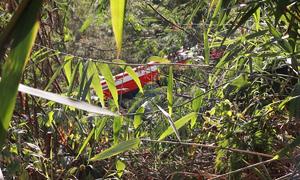 15 người thoát chết khi xe khách lao xuống vực