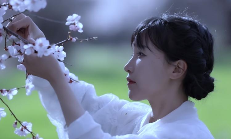 Lý Tử Thất trong một video quay tại huyện Bình Vũ, tỉnh Tứ Xuyên, Trung Quốc. Ảnh:Youtube/Li Ziqi.