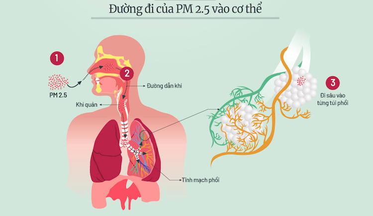 Những đợt ô nhiễm bụi mịn ở Hà Nội trong năm 2019 - 2