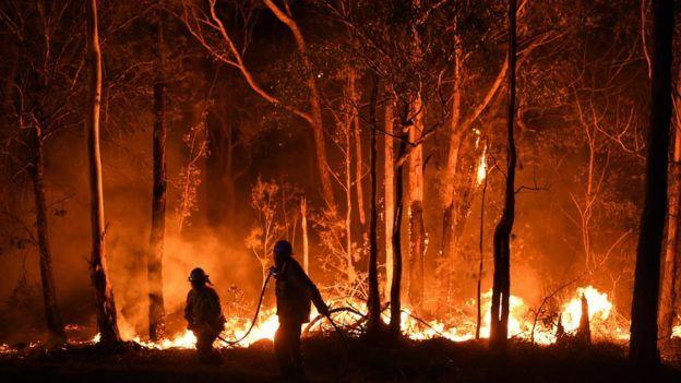 Lính cứu hỏa. Ảnh: Sydney Morning Herald
