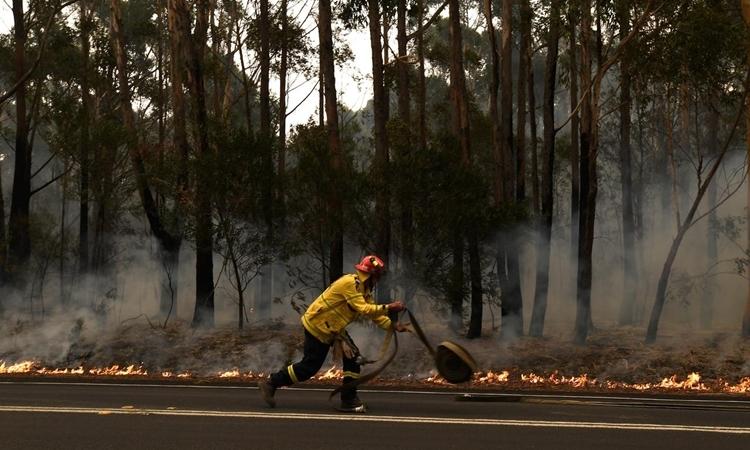 Lính cứu hỏa dập tắt đám cháy trên cao tốc Princes, phía nam Ulladulla, bang New South Wales, Australia, ngày 5/1. Ảnh: Reuters.