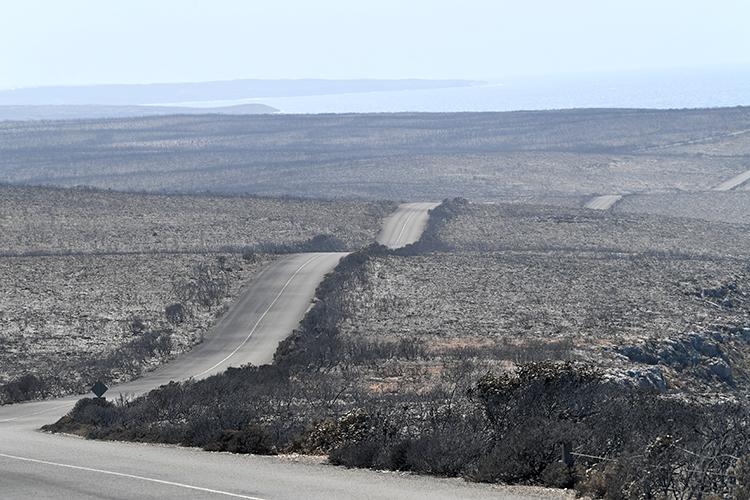 Công viên quốc gia Flinders Chase nằm trên đảoKangaroo, phía tây nam Adelaide, Australia, bị thiêu rụi hoàn toàn hôm 7/1. Ảnh: Reuters