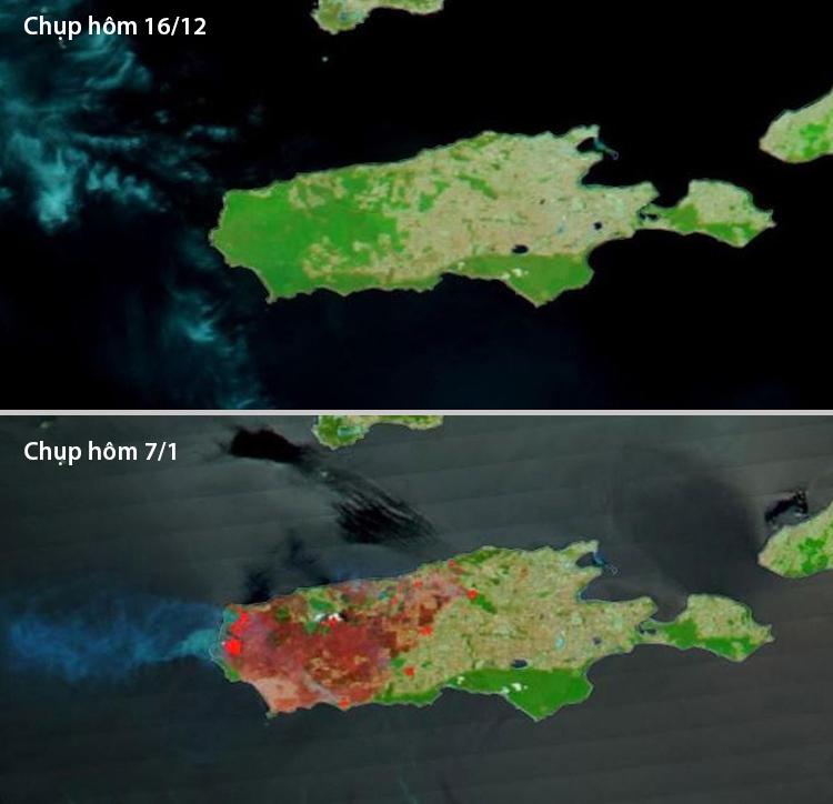 Ảnh chụp vệ tinh đảo Kangaroo. Ảnh: NASA.