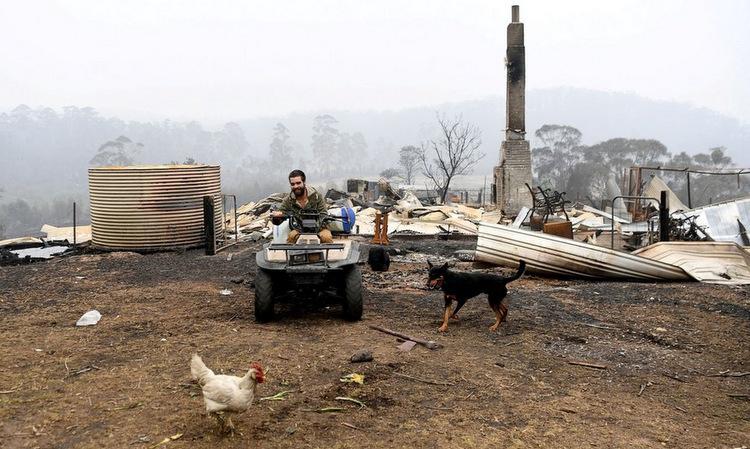 Thomas ngồi trên xe máy bốn bánh tại trang trại ở Kiah hôm 8/1. Ảnh: Reuters.