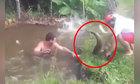 Nhiều người hả hê khi đàn cá chủ động sa lưới