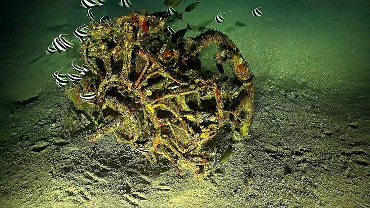Động cơ của chiếc TBF được tìm thấy ở độ sâu 49,9 m. Ảnh: Scripps