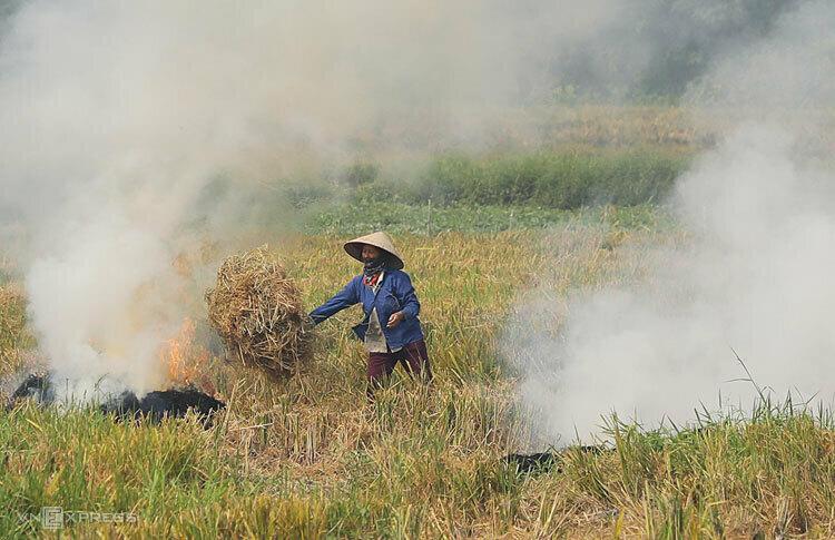 Người dân đốt rơm rạtại cánh đồngxã Kiến Hưng, Hà Đông, Hà Nội, ngày 1/10/2019. Ảnh: Ngọc Thành.