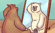 Con gấu có màu gì?