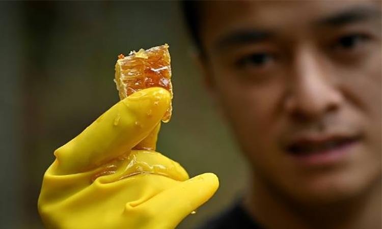 Ma Gongzuo bán mật ong qua ứng dụng chia sẻ video trực tuyến. Ảnh: AFP.