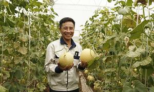 Người đàn ông biến đất hoang thành trang trại tiền tỷ