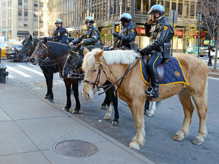 Cảnh sát trên lưng ngựa là cảnh tượng thường thấy tại quảng trường Times Square, thành phố New York. Ảnh: