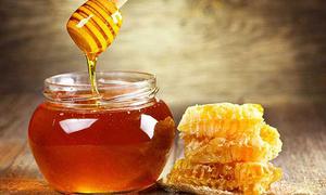 Quy trình sản xuất mật ong Lào Cai